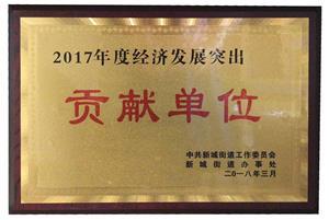 2017年度经济发展突出贡献单位